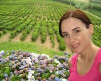 Traper - Porto Formoso, jedyne w Europie plantacje herbaty