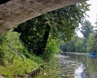 Mini Traper - Kanał Iławski