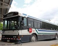 Mini Traper - Dworzec autobusowy w Cañas