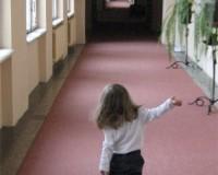 Mini Traper - Stary Dom Zdrojowy