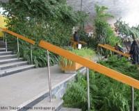 Mini Traper - Ogród w pijalni wód