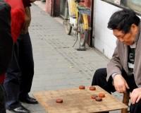 Mini Traper - Chengdu